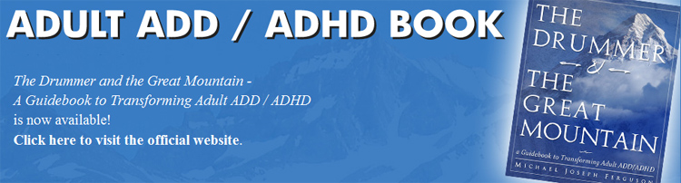 Adult ADD ADHD Book, ADD ADHD Book, Holistic ADD ADHD, Natural ADD ADHD Treatment